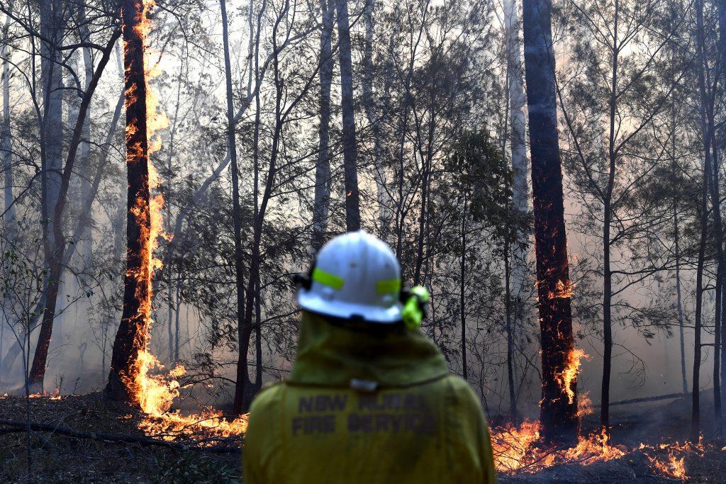 bushfire crisis